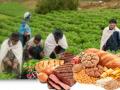 ILustración de los cursos de formación de FAO-ALC