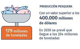 detalle de infografía sobre importancia de la pesca