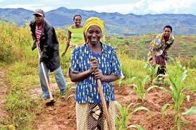 jóvenes en la agricultura