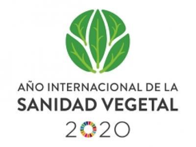 Logotipo del año internacional de la sanidad vegetal