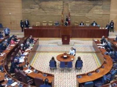 imagen de la asamblea de madrid