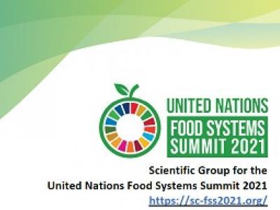 Banner del grupo científico de la cumbre de sistemas alimentarios